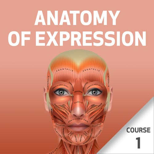 Anatomy of Expression - Course 1