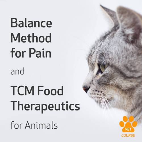 Balance Method for Pain and TCM Food Therapeutics for Animals