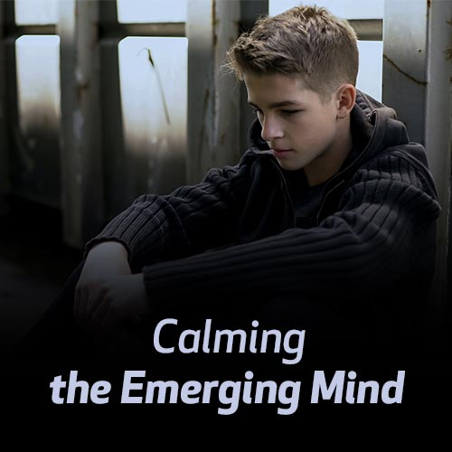 Calming the Emerging Mind