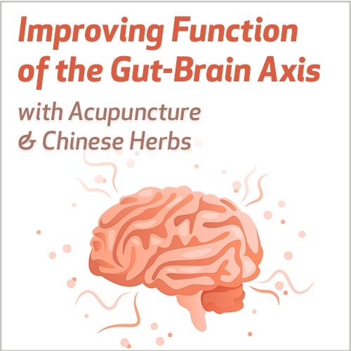 Improving Function of the Gut-Brain Axis with Acupuncture & Chinese Herbs
