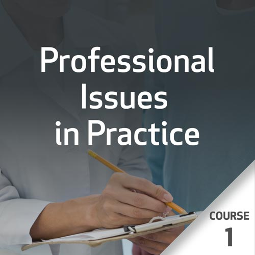 Professional Issues in Practice - Course 1