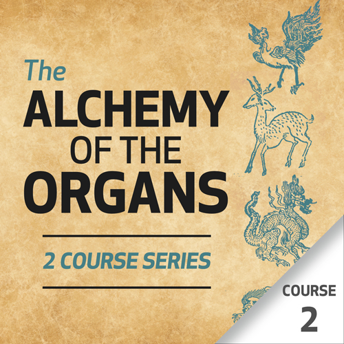 The Alchemy of the Organs - Course 2